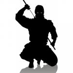 Fazendo Backup do WordPress como um ninja; sem anos de treinamento